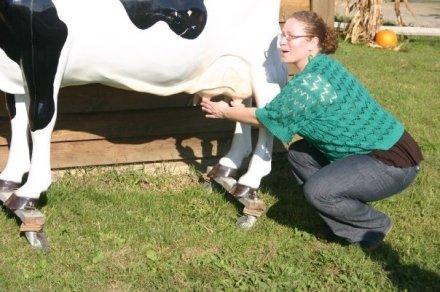 I milk fake cows.
