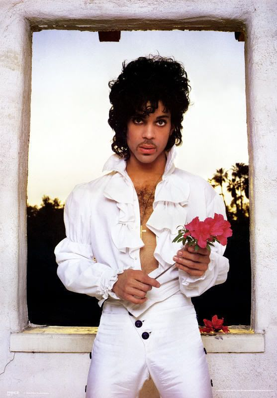 prince 80's rose